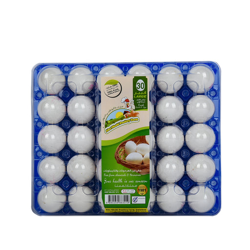 Abudhabi White Eggs Large 30pcs