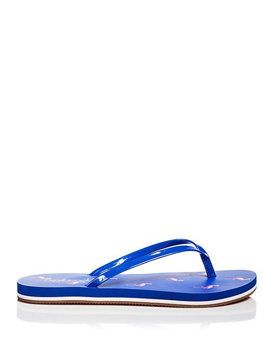 SPLENDID Flip Flop Sandals - Firefly Flamingo-SPLENDID-Fashionbarn shop