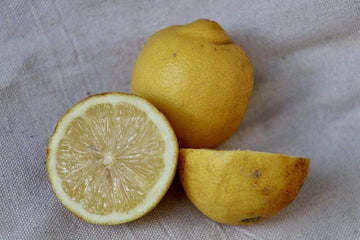 Organic Eureka Lemon, 16 oz from Brokaw Ranch Company - San Francisco Farmers Market Delivery