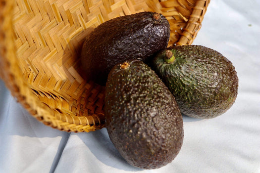 Organic Large Avocados, 1 unit from Brokaw Ranch Company - San Francisco Farmers Market Delivery