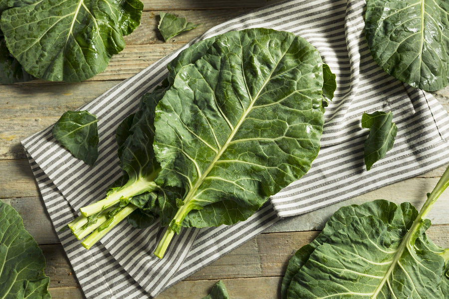 Organic Collard Greens, 1 bunch from Everything Under the Sun - San Francisco Farmers Market Delivery