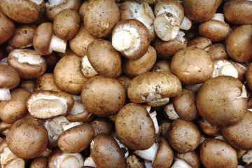 Organic Brown Mushrooms, 16oz from Far West Fungi - San Francisco Farmers Market Delivery