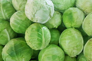 Cabbage, 1 unit