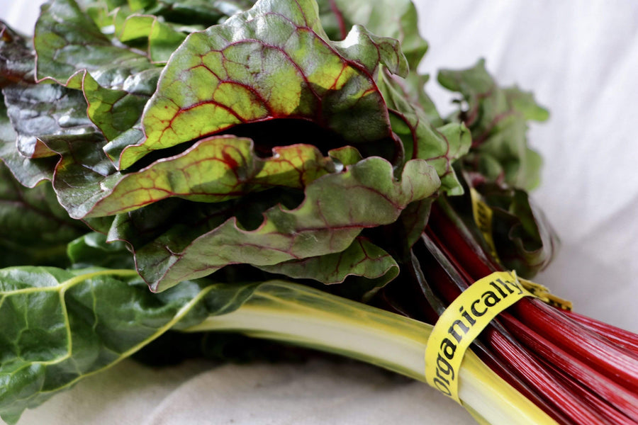 Organic Chard, 1 bunch from Green Thumb Organics - San Francisco Farmers Market Delivery