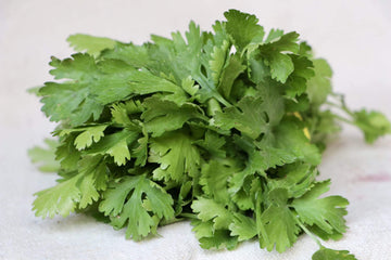 Organic Cilantro, 1 bunch from Green Thumb Organics - San Francisco Farmers Market Delivery