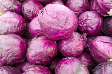 Organic Red Cabbage, 1 unit from Green Thumb Organics - San Francisco Farmers Market Delivery