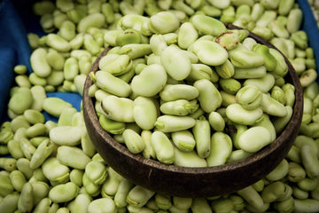 Organic Fava Beans, 16oz from Iacopi Farms - San Francisco Farmers Market Delivery