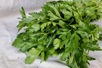 Italian Parsley, 1 bunch