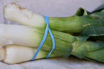 Organic Leeks, 1 bunch from Oya Organics - San Francisco Farmers Market Delivery