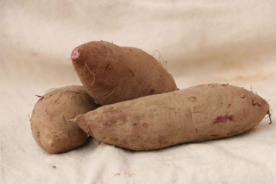 Organic Sweet Potatoes, 16 oz from Oya Organics - San Francisco Farmers Market Delivery