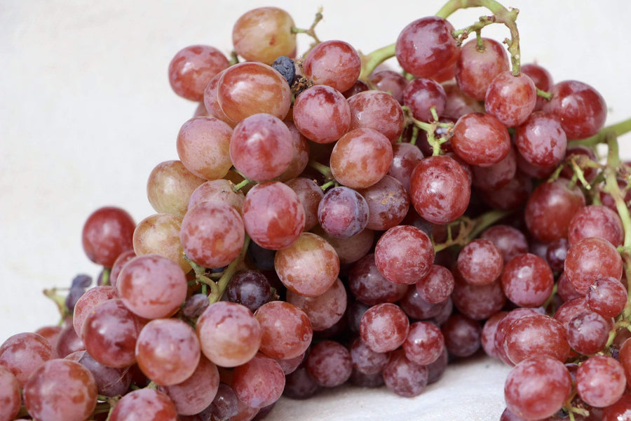 Seedless Grapes, 16 oz