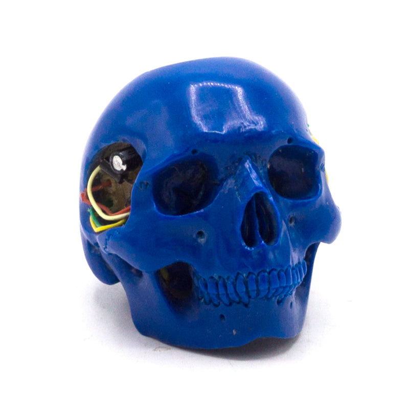 BIONIC POOL BALL SKULL - BLUE #2