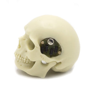 HAND CARVED BIONIC POOL BALL SKULL - WHITE
