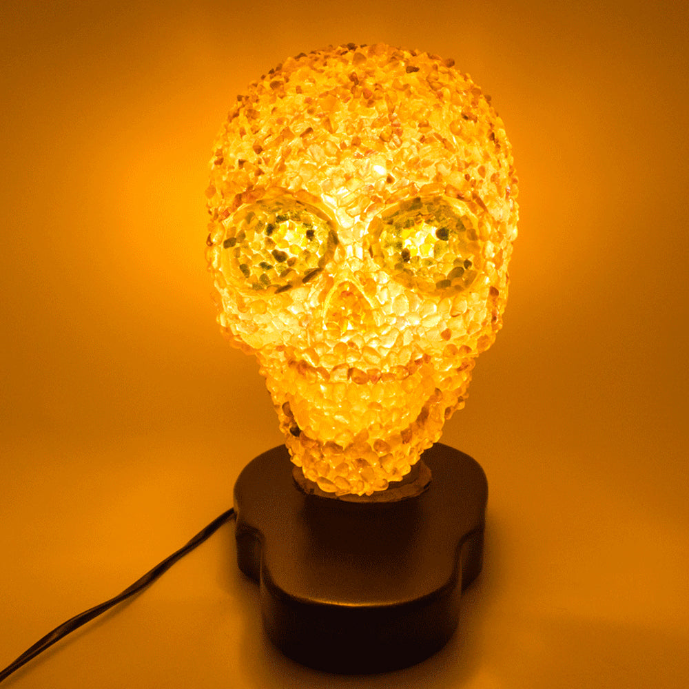 CLEAR RESIN SKULL WITH WOOD BASE LAMP - 'HEAD LIGHT'