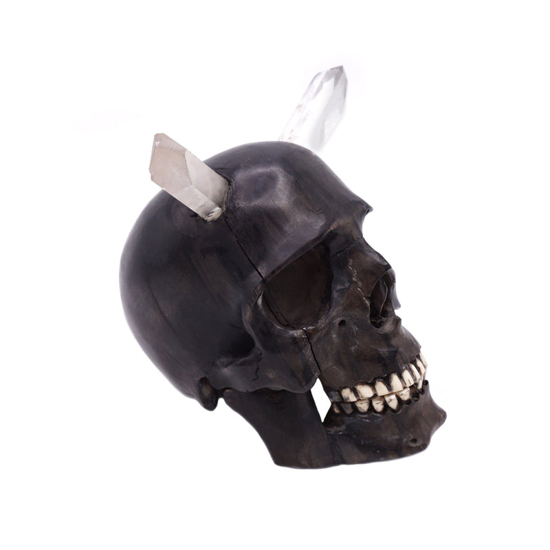 HAND CARVED WOOD SKULL WITH CRYSTAL HORNS - SMALL