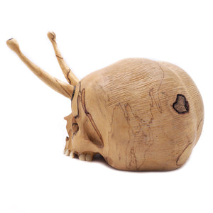 HAND CARVED WOOD 'SNAIL SKULL' - SMALL