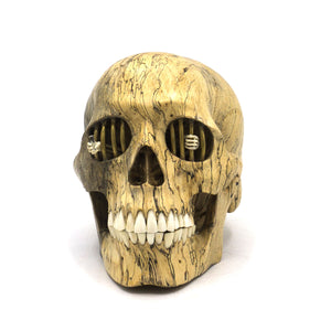 HANDCARVED-WOOD-SKULL-JAIL-MIRROR-ART-ARTWORK-DECOR-MEDIUM