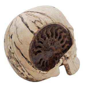HAND CARVED WOOD SKULL WITH AMMONITE - LARGE - 'AMMONITE PERSON'