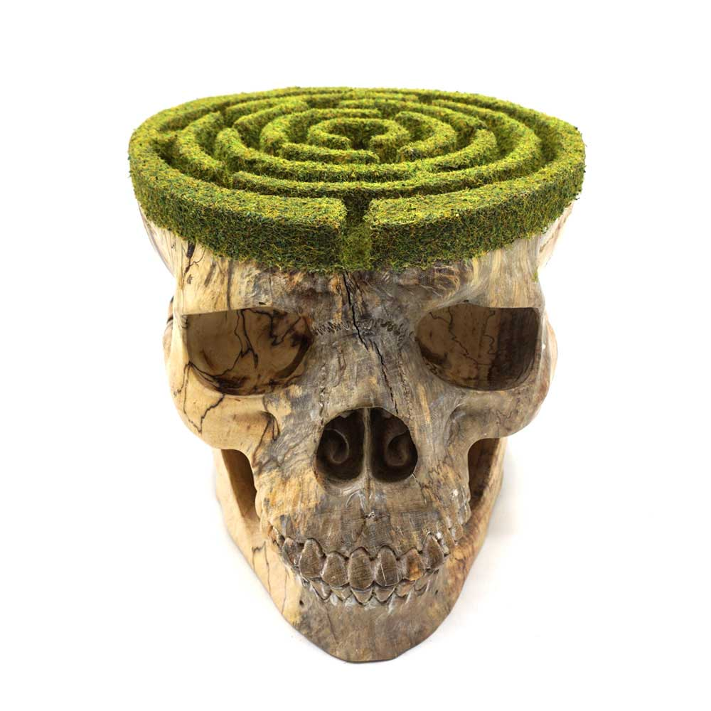 HAND CARVED WOOD AND GRASS MAZE SKULL - 'AMAZEMENT FOR YOU'