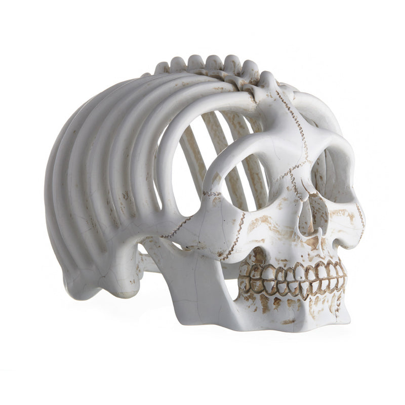 RIBBED SKULL - CRACK - 'KEVIN'