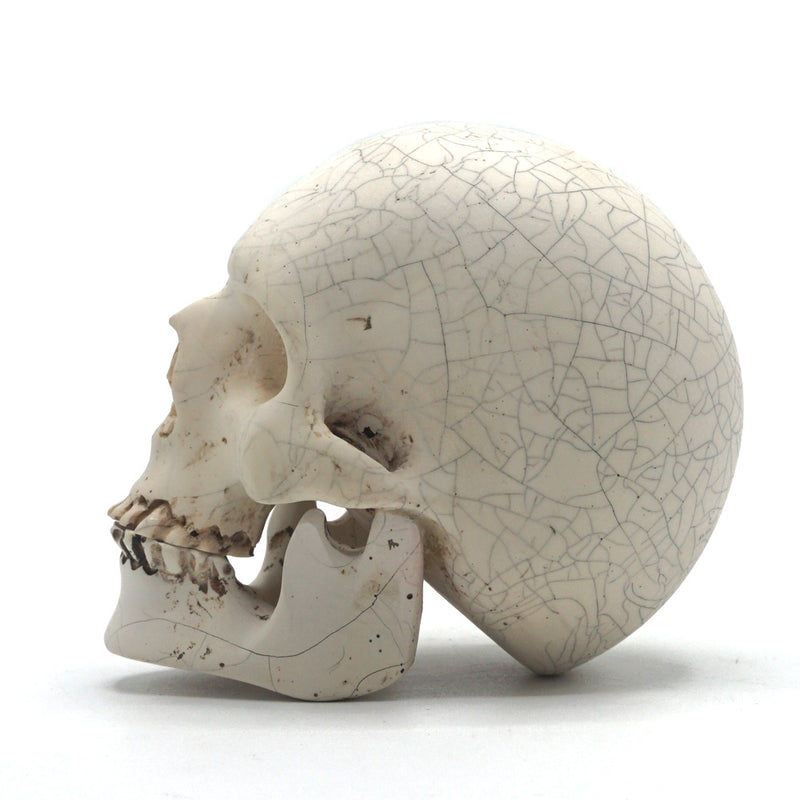 SMALL RESIN SKULL - CRACK