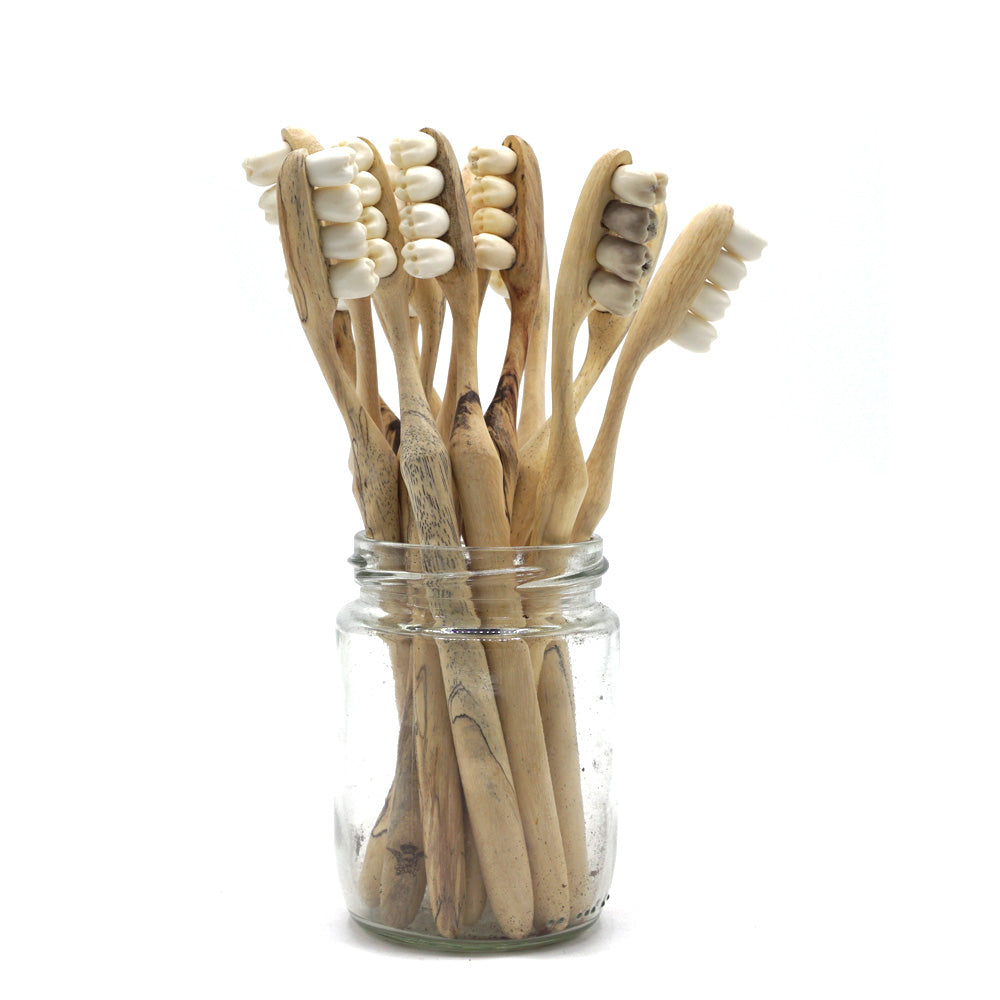 HAND CARVED WOOD AND BONE TEETHBRUSH - 'DENTAL AS ANYTHING'