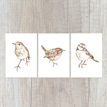 Load image into Gallery viewer, Garden Birds Print Set