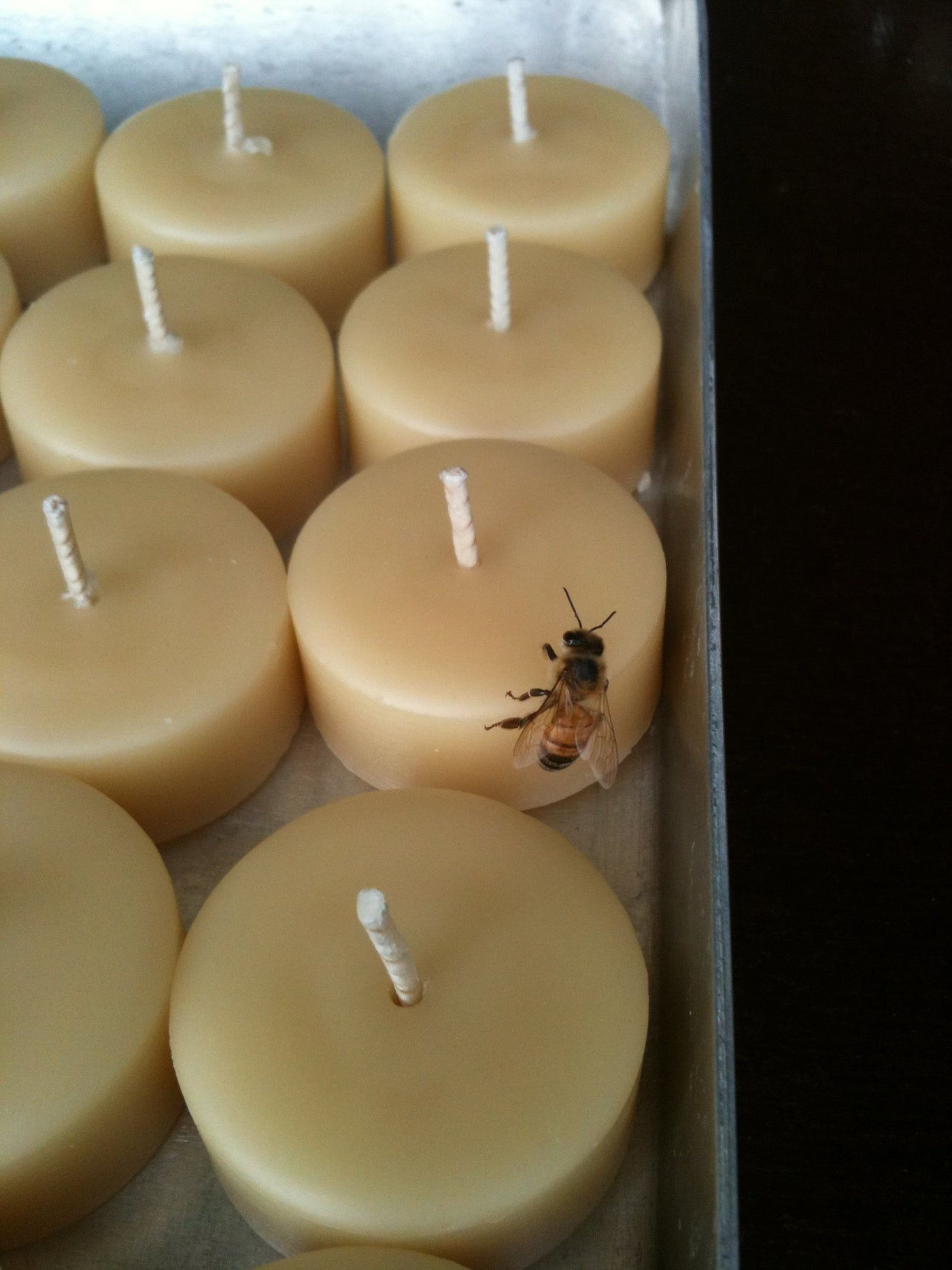 Queen B candles - 100% Pure Beeswax - as certified by the bees!