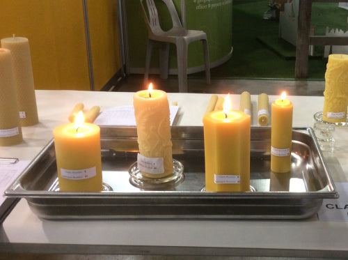 National Honey Show solid beeswax pillar candles over 3cm