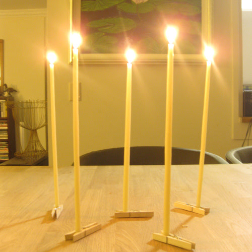 For a light brighter than the northern light burn Queen B beeswax Bee Light candles