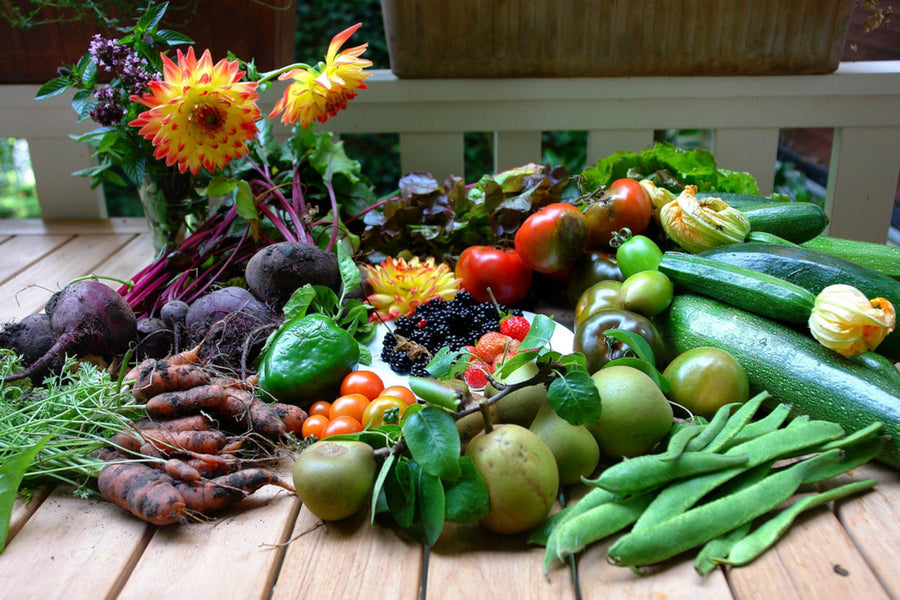 Lutein and Eye Health - What's in your Garden?