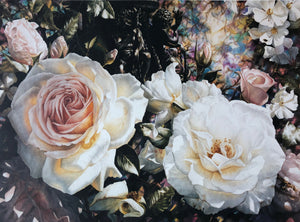 """Roses"" - Paul Coney"