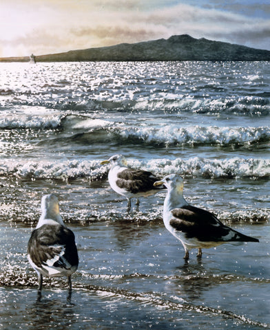 """Rangitoto & Gulls"" - Paul Coney"