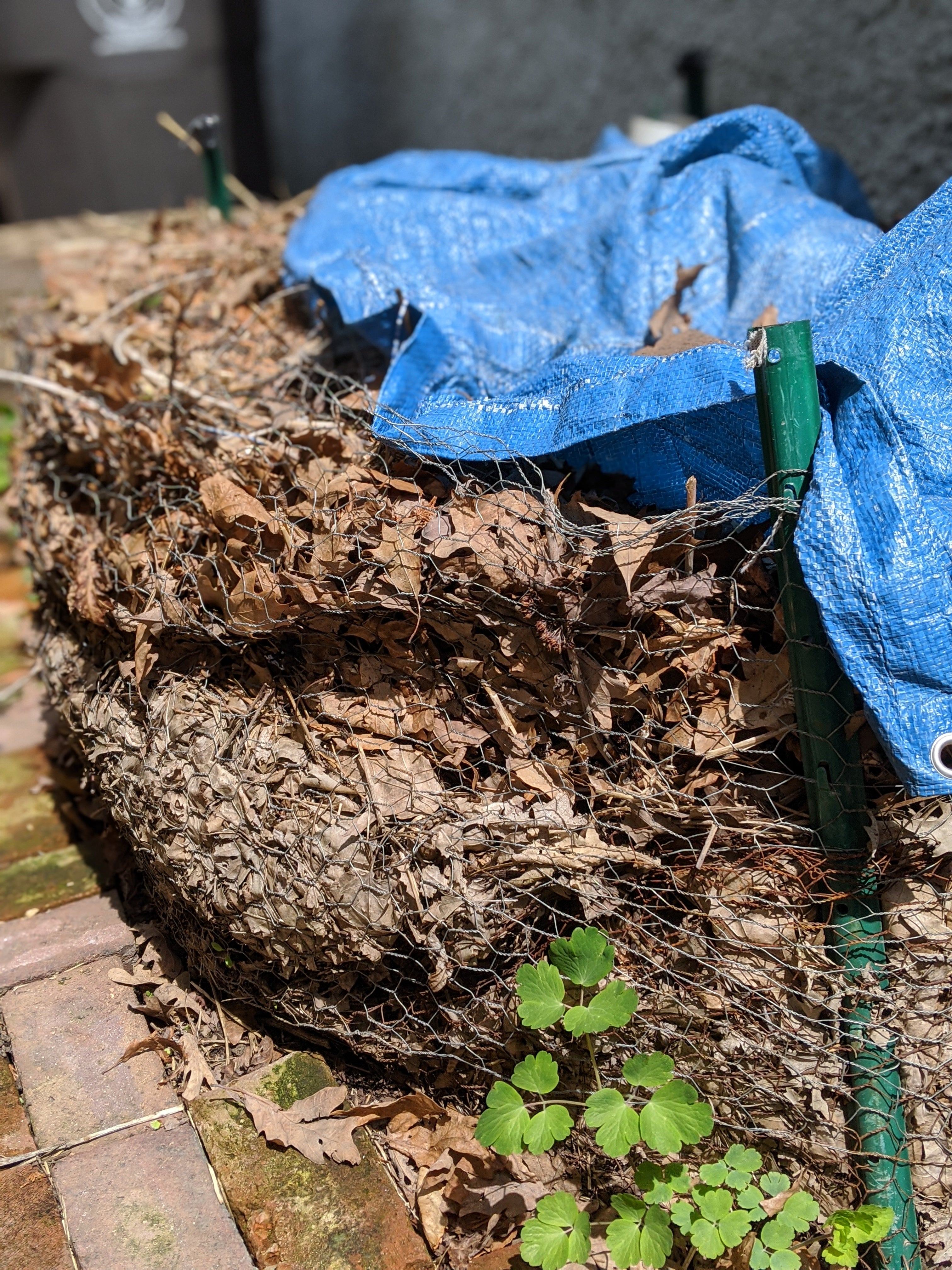 static pile composting with minimal effort