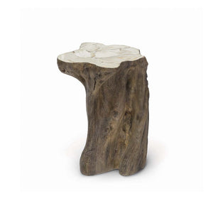Chloe Fossilized Clam Stump Table