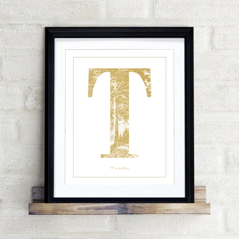 """T"" is for Tree"