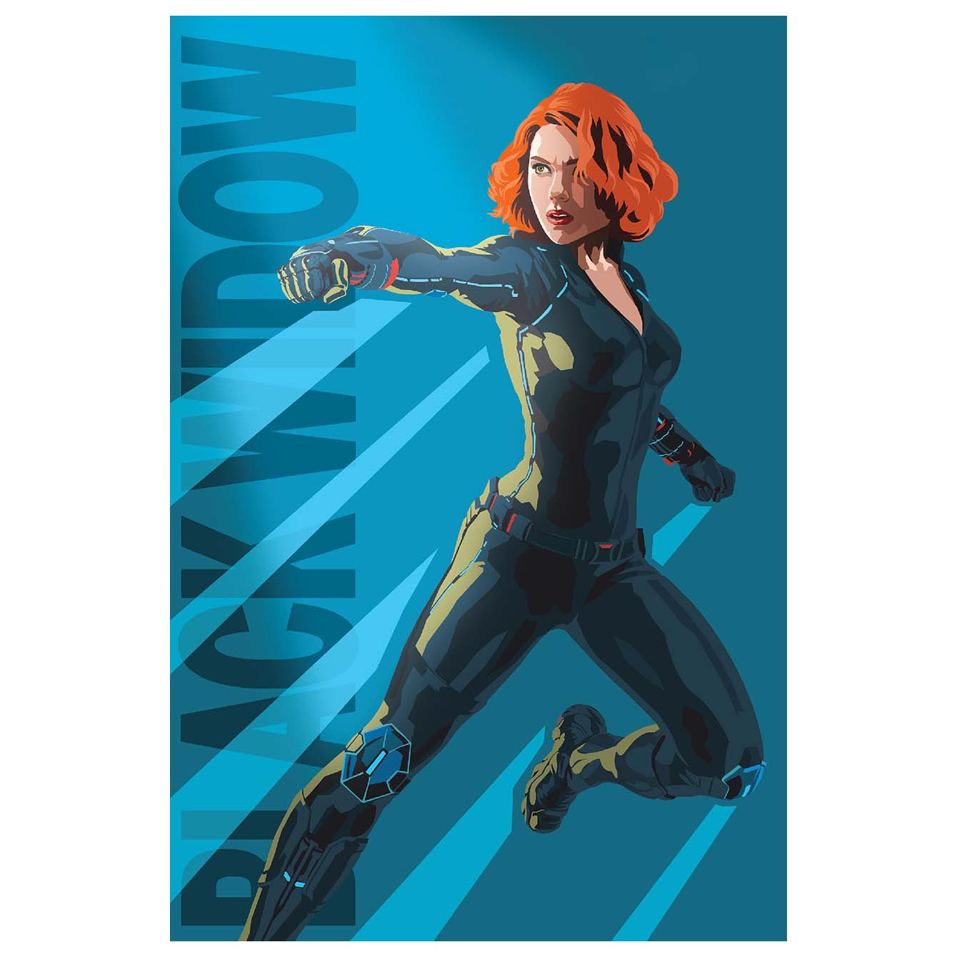 Black Widow Wall Decor Poster