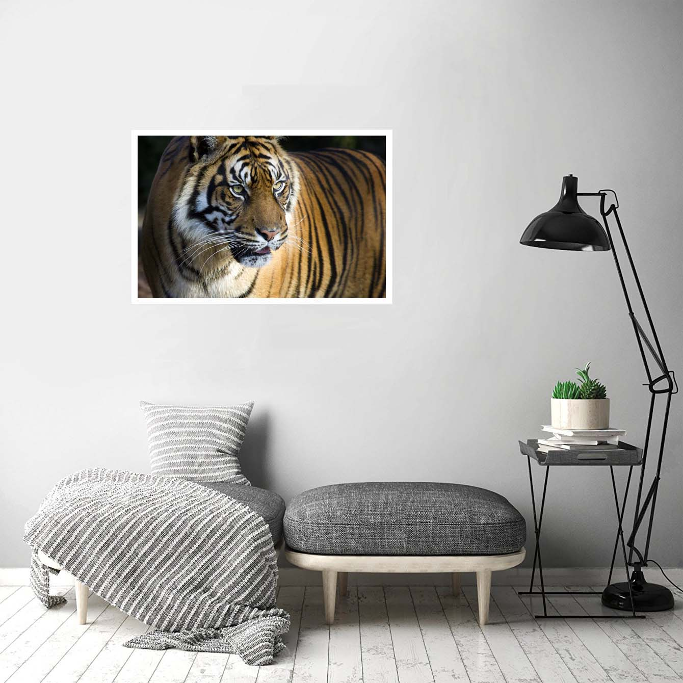 Tiger Animal Posters