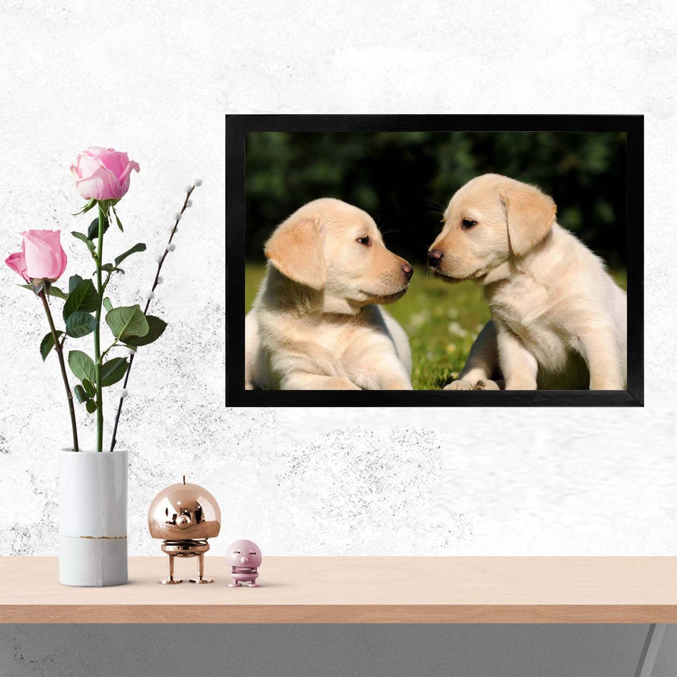 Dogg Animal Glass Framed Posters & Artprints