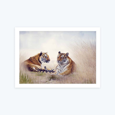 Couple Tiger Framed Painting