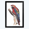 Parrot  Glass Framed Painting