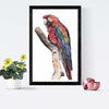 Parrot Framed Painting