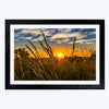 Sunrise  Framed Photography