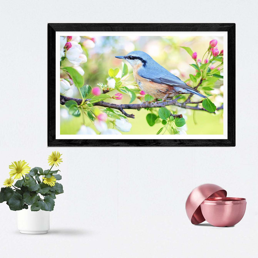 Bird Framed Photography