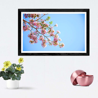 Blossoms Framed Photography
