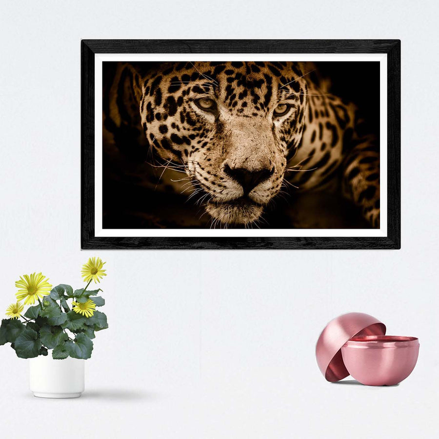 Panther Framed Photography