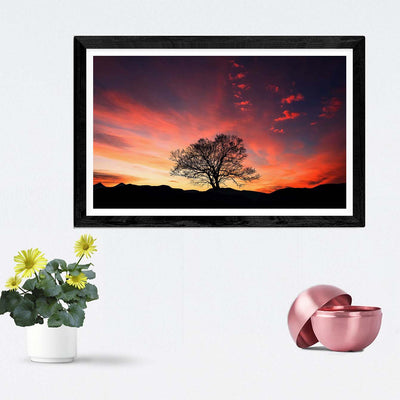Environments Framed Photography