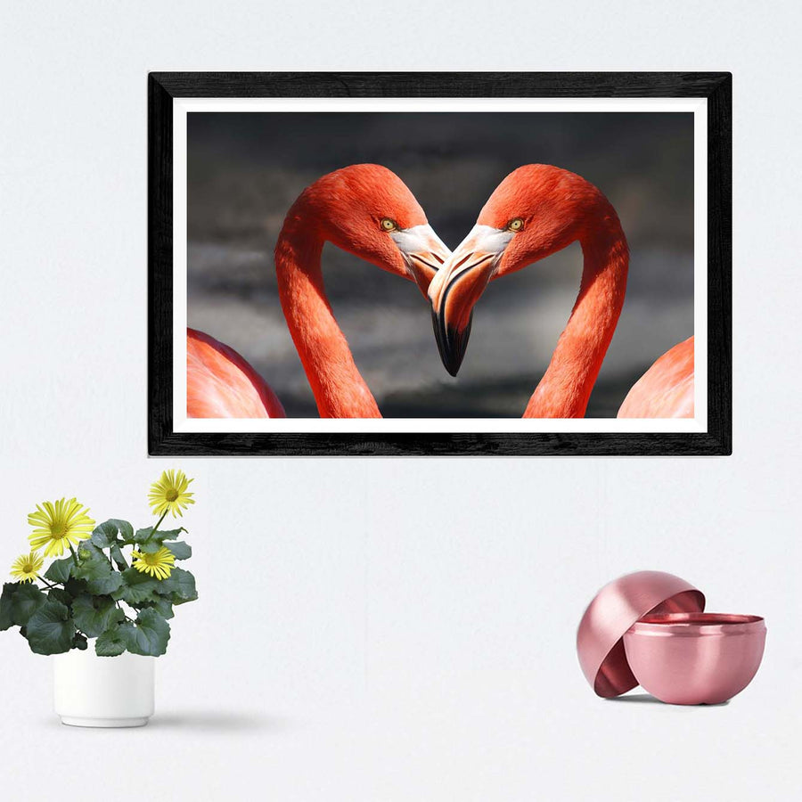 Couple Swan Framed Photography