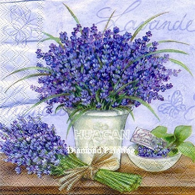 Lavender Illustration Set