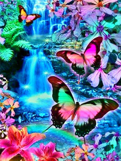Butterflies And Nature